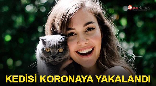 Berfu Yenenler'in kedisi koronavirüse yakalandı