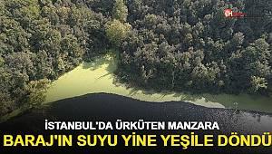 İstanbul'da ürküten manzara;  Barajı'nın suyu yine yeşile döndü