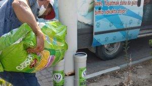 Saruhanlı Belediyesinden sokak hayvanlarına destek