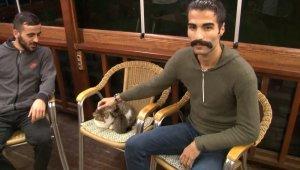 Bağcılar'daki kedi saldırısının görgü tanıkları konuştu