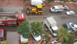 Devrilen ağaçlar onlarca otomobile zarar verdi