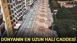 Dünyanın en uzun halı caddesi