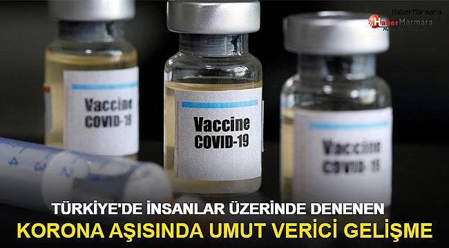 Türkiye'de denemeleri yapılan korona aşısında umut verici gelişme