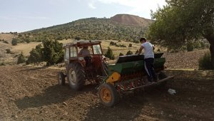 Zorluklara rağmen Anadolu'da sonbahar ekiminin telaşı başladı