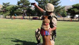 Jandarma, can dostları köpekler için kısa film çekti