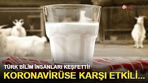 Türk bilim insanları keşfetti! Koronavirüse karşı etkili protein içeriyor