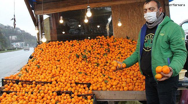 Vitamin deposu Derepazarı mandalinası tezgahları süslüyor