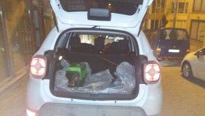 Yaralı köpekler tedavi için İstanbul'a gönderildi
