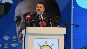 """Bakan Pakdemirli: """"AK Parti ile MHP'nin ittifakı; seçim değil, hizmet ittifakıdır"""""""