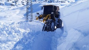 Çatak'ta çığ düştü: 1 mahalle ve 6 mezranın yolu kapandı