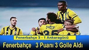 Fenerbahçe 3 - 1 Ankaragücü