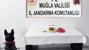 Jandarmadan Bodrum'da uyuşturucu operasyonu