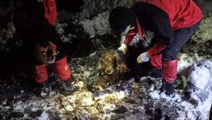 Karda ahır çöktü, 9 büyükbaş telef oldu