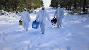 Aşı ekipleri komando gibi: Kar ve baraj onlara engel olamadı