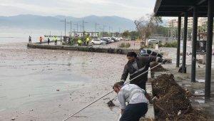 İzmir'de selden sonra körfezden 25 ton çöp toplandı