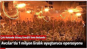 Avcılar'da 1 milyon liralık uyuşturucu operasyonu