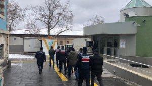 Kütahya'da hayvan hırsızlığına 5 gözaltı