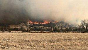 ABD'nin Kuzey Dakota eyaletinde orman yangını: gökyüzü dumanla kaplandı