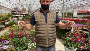 Afyonkarahisar'da çiçekçiler sezona hazır