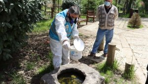 İzmit'te sivrisinekle mücadele sürüyor