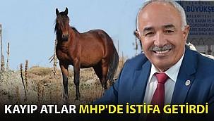Kayıp Atlar MHP'de İstifa Getirdi