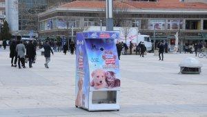 Kırşehir Belediyesi sokak hayvanları için 'mamamatik' uygulama noktası oluşturdu