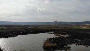 Kül olan Gölünyazı Kuş Cenneti havadan görüntülendi