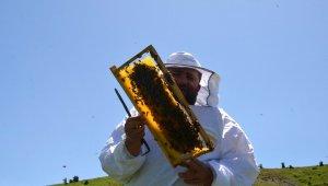 Bal arılarından Muş ekonomisine tatlı katkı