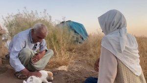 Çocuğu olmayan yaşlı çift ölen köpekleri için gözyaşı döktü