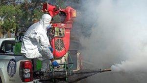 Didim'de sivrisinek ile mücadele çalışmaları devam ediyor