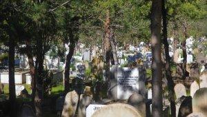 Erzincan'da bayramın ilk günü mezarlıklarda sessizlik hâkim oldu