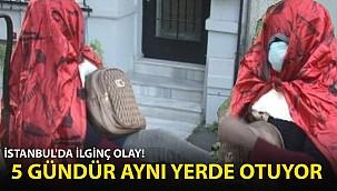 İstanbul'da İlginç Olay! 5 Gündür Aynı Yerde Oturuyor