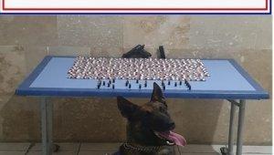 Jandarma yüzlerce uyuşturucu madde yakaladı
