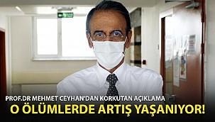Prof. Dr. Mehmet Ceyhan: O Ölümlerde Artış Yaşanıyor