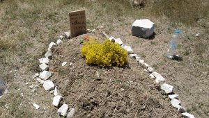 Başkent'te boş arazide bulunan yeni yapılmış mezar polisi alarma geçirdi