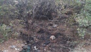 İzmir'de orman yangını çıkarmak isteyen şüpheli, PKKKCK üyesi çıktı