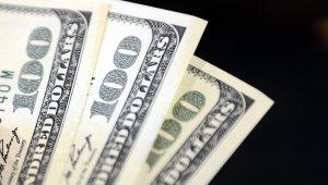 Dolar Kritik Haftaya Girdi