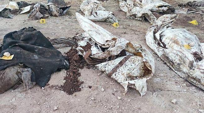 Afrin'de PKK vahşeti: 35 sivilin cansız bedeni bulundu