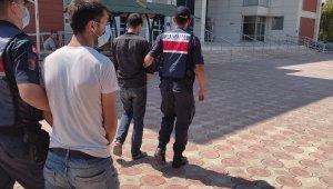 Antep fıstığı hırsızları tutuklandı