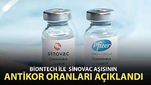 BioNTech İle Sinovac Aşısının Antikor Oranları Açıklandı
