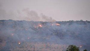Gaziantep'te çıkan orman yangını kontrol altına alındı