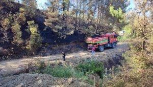 Hatay'da orman yangını kontrol altına alındı