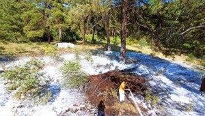 Mustafakemalpaşa'da çıkan orman yangına zamanında müdahale