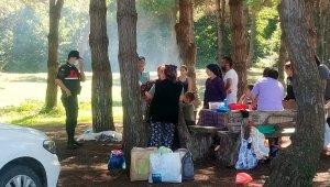 Samsun'da jandarma ekipleri ormanda denetim yaptı