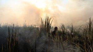 Sazlık alandaki yangın ekipleri harekete geçirdi