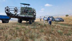Tarsus'ta karabuğday hasadı