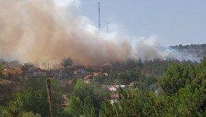 Uşak'ta orman yangını Ekipler harekete geçti
