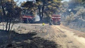 Arnavutluk orman yangınlarıyla boğuşuyor
