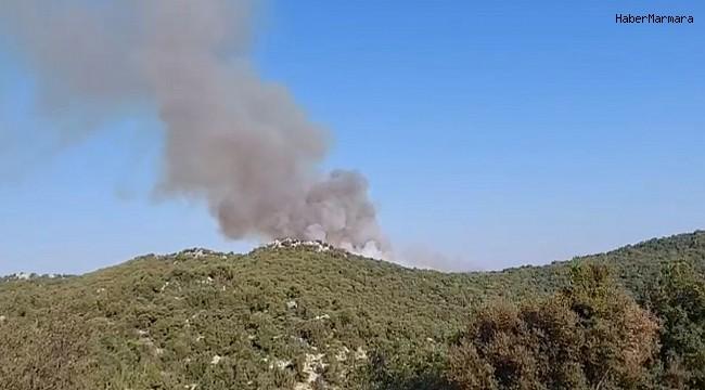 Demre'deki orman yangını söndürüldü