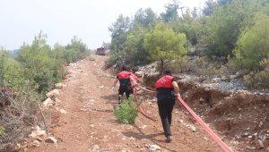 Emniyet Genel Müdürlüğü birlikleri orman yangınlarıyla mücadelede ekiplere destek veriyor